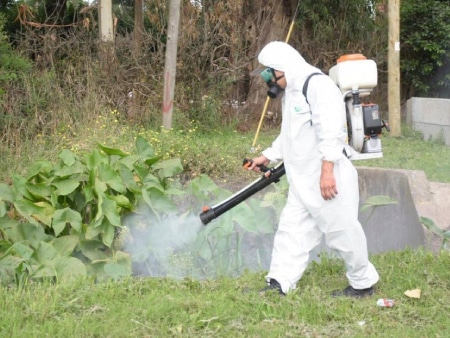 control de plagas de jardin