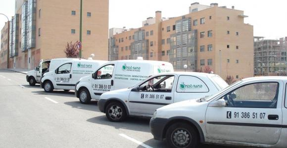 empresa de control de plagas en madrid