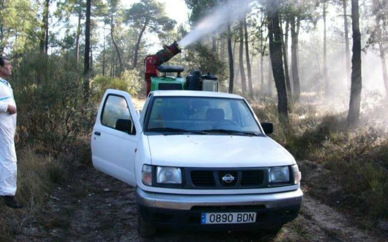 tratamiento contra las plagas de la madera