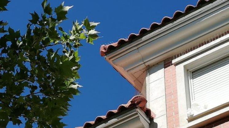 tejado antiposamiento de aves